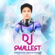DJ Smallest