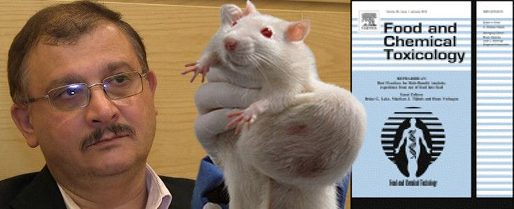 Séralini, the scientist known for his research linking GM feed with cancerous tumor growth in rats, recently won defamation and forgery court cases.