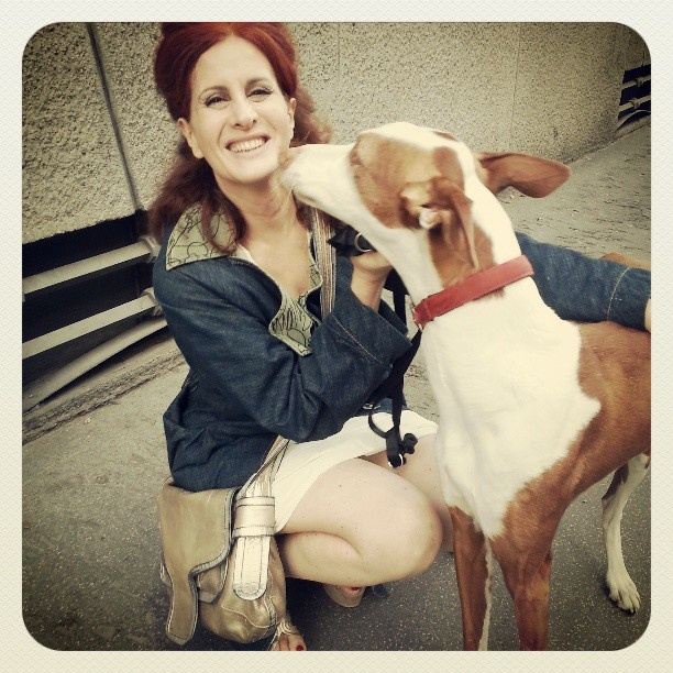 The RedHead, Rossana Diana, happy to find a Podenco Ibicenco in Milano. Ribes you are beautiful