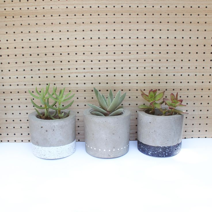 Set of 3 concrete plant pots with black and white details and beautiful succulents
