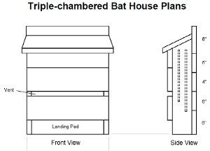 11 best Bat Houses images on Pinterest Bats Bat box and Bat