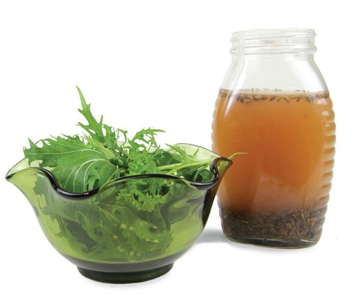 Sage, Rosemary, Lavender, and Thyme--Four Thieves Vinegar and Vinaigrette.
