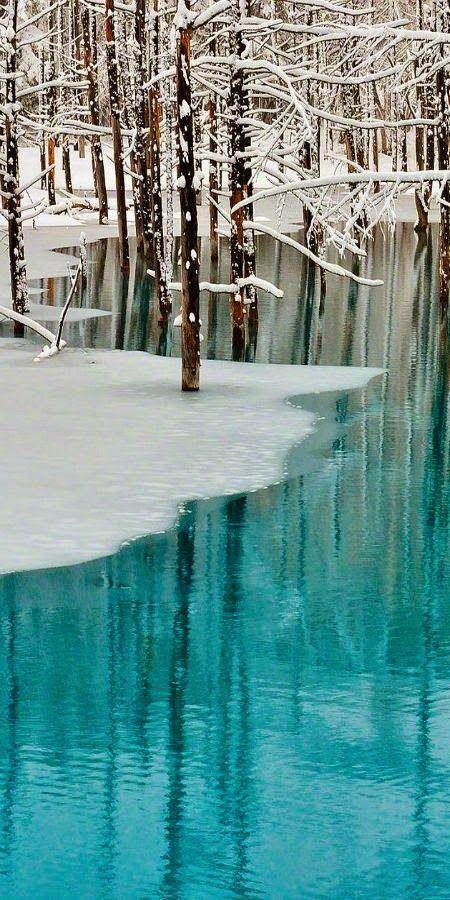 Beautiful aqua white winter
