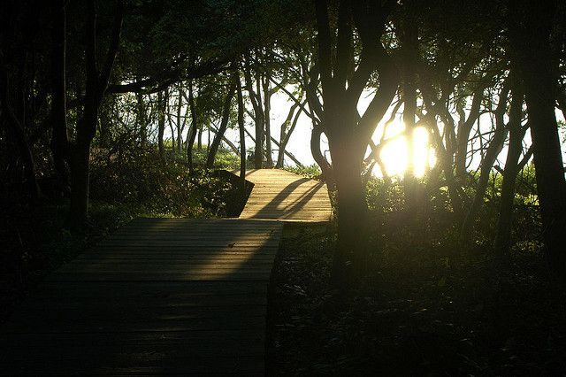 10 Best Hiking Trails on Long Island | Huffington Post NY
