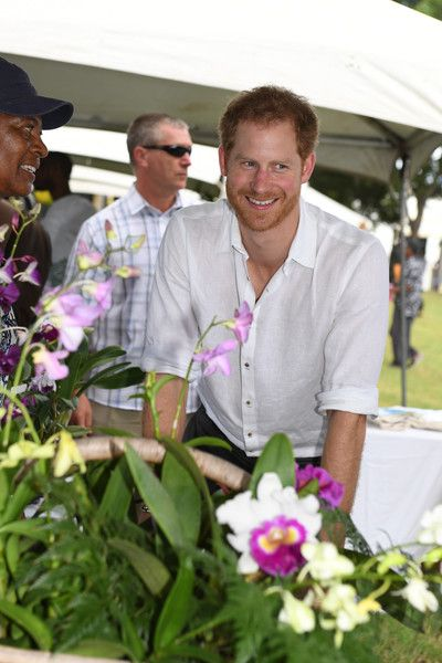 Prince Harry Photos Photos - Prince Harry unveils the first of four dedications towards the Queen's Commonwealth Canopy during Arbour Day Fair at Queen Victoria Park Botanical Gardens on the third day of an official visit on November 22, 2016 in St John's, Antigua and Barbuda. Prince Harry's visit to The Caribbean marks the 35th Anniversary of Independence in Antigua and Barbuda and the 50th Anniversary of Independence in Barbados and Guyana. - Prince Harry Visits The Caribbean - Day 3