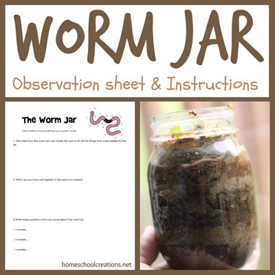 Free Worm Jar Observation Sheet + Directions for Homeschool Worm Jar Science