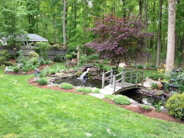 54 Best Images About Fish Pond On Pinterest Gardens