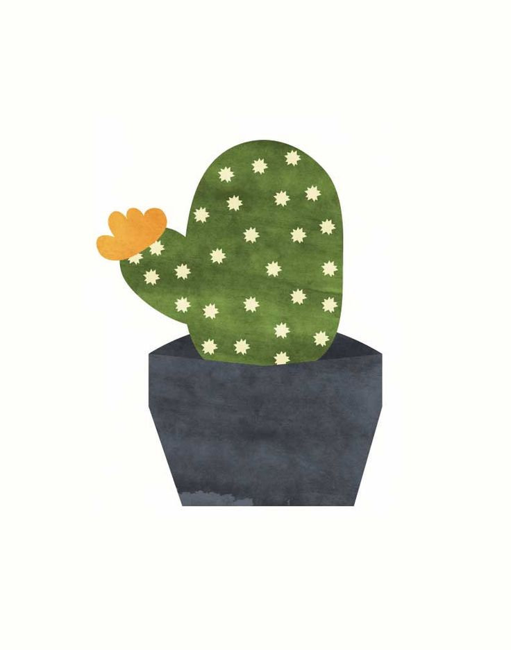 Cactus giclee print graphic illustration A by cocoandmintstudio