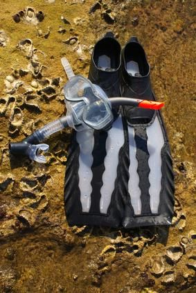 How to Clean Snorkeling Equipment