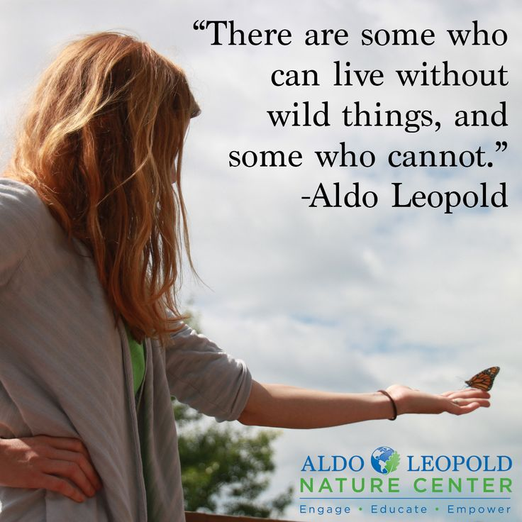 17 best images about aldo leopold