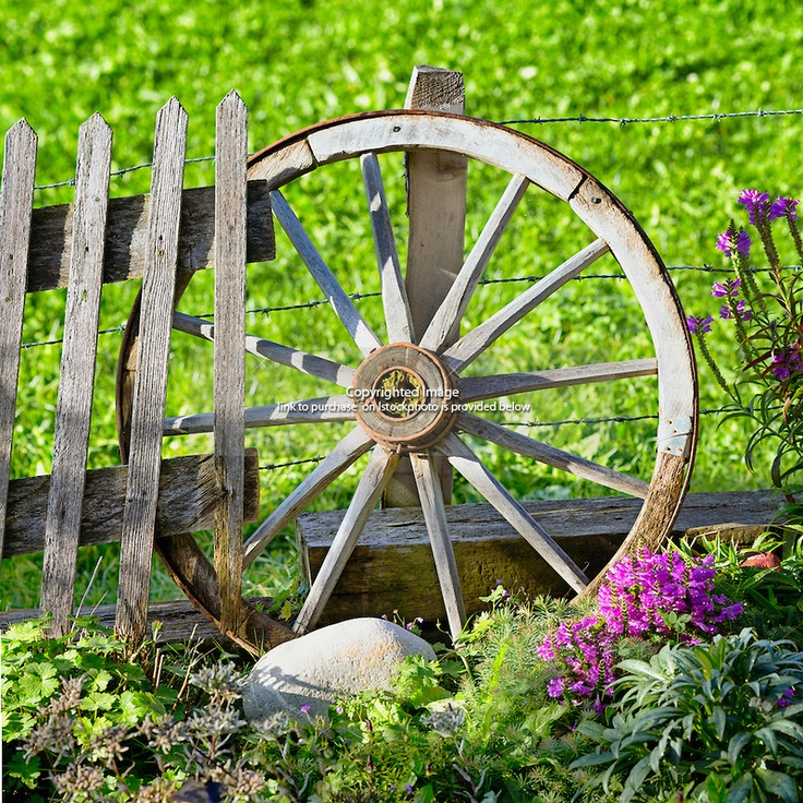 Old Wheel Garden Decoration Resting Against Barbed Wire And A Picket Fence Is Holding It Wagon Wheelsbarbed