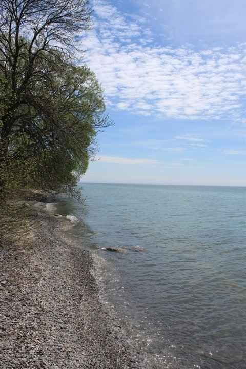 Presqu'ile Provincial Park, Ontario Canada. Gathered fossils here in 1972