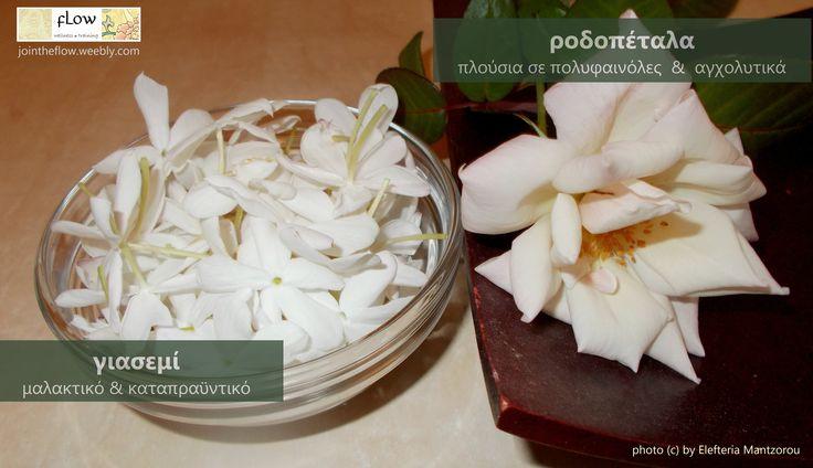 Καλλιεργούμε μόνοι μας τα βότανα που σας προσφέρουμε δωρεάν μετά τα μαθήματα και τα μασάζ! Ξέρατε ότι το γιασεμί και το τριαντάφυλλο πίνονται;