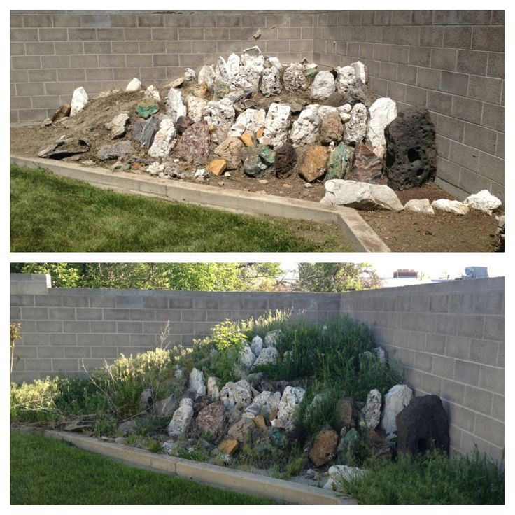 14 best images about yard clean ups before after for Landscaping rocks tooele utah