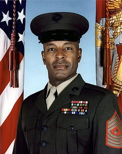 Alford L. McMichael (born February 24, 1952) is a retired United States Marine who served as the 14th Sergeant Major of the U.S. Marine Corps from 1999 to 2003. He was also the first Senior Non-Commissioned Officer for Allied Command Operations for NATO (2003–2006). McMichael retired from the Marine Corps in 2006 after 36 years of service