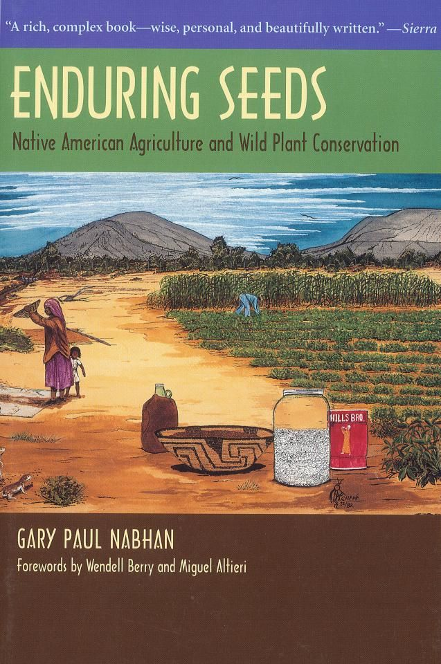 17 Best Images About Native American Indian Food On