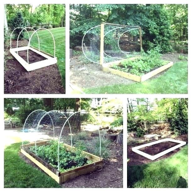 how to protect garden from animals vegetable fence ideas ...