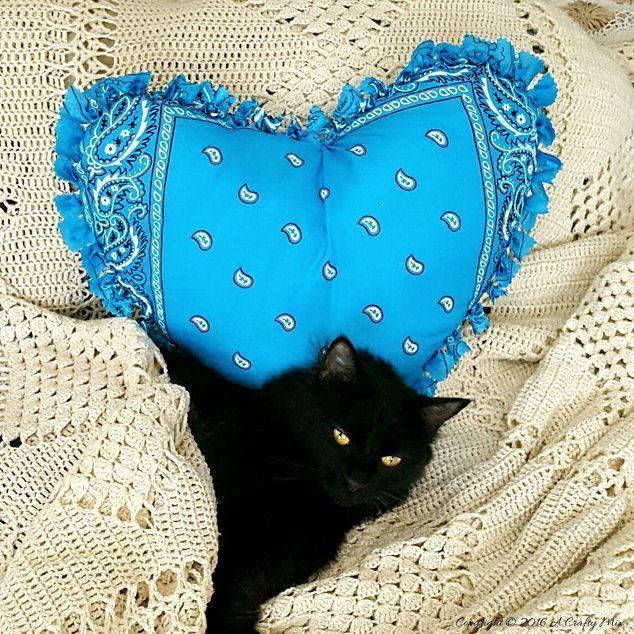 Easy No Sew Bandana Heart Pillow