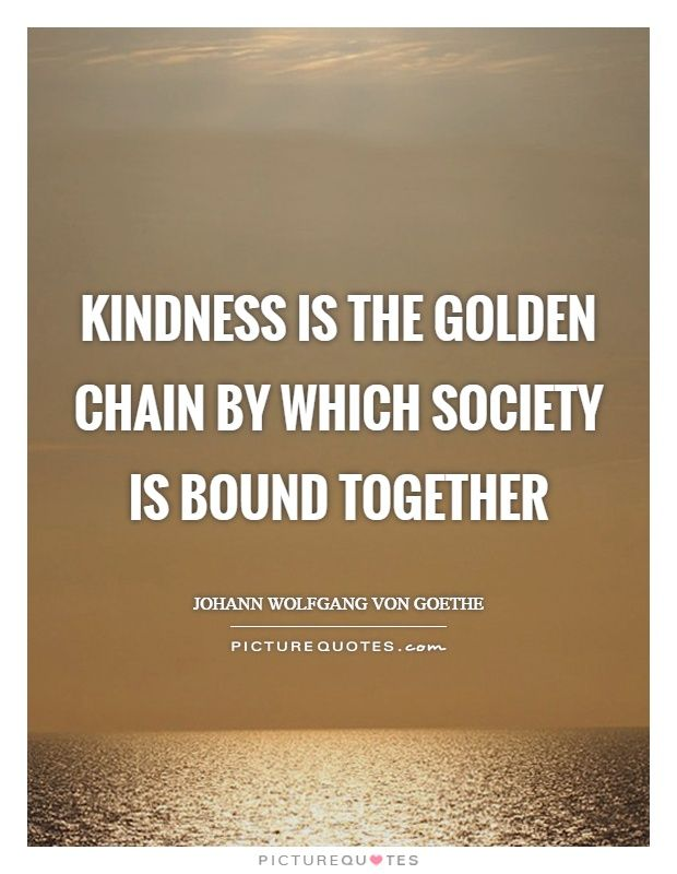 einstein quotes | Kindness Quotes Society Quotes Johann Wolfgang Von Goethe Quotes
