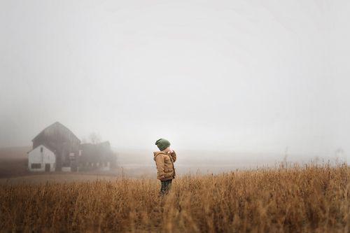 Me gusta la composición, la niebla, la combinación de tonos cálidos y tonos frios