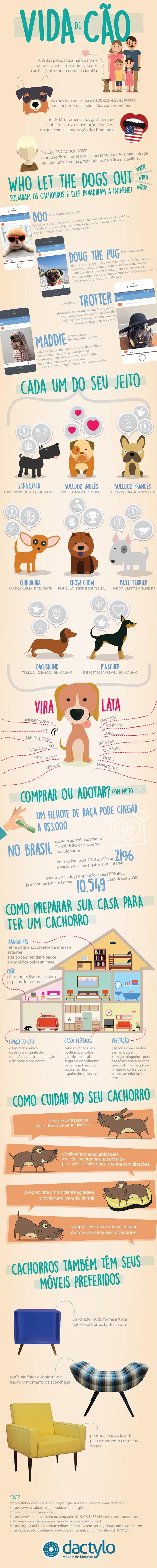 INFOGRÁFICO-VIDA-DE-CÃO-BLOG-DACTYLO-NO-BLOG-DECOR-CACHORRO