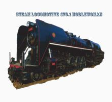 Steam locomotive 475.1 noblewoman by Rostislav Bouda