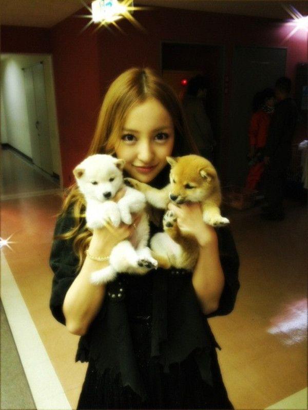 Tomochin + puppies #AKB48