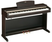 Digital Piano Rentals for your Home!        www.expresspianos.com/philly          Are you or a family member preparing to take piano lessons and need a high quality     digital piano at an affordable price?  Express Digital Piano Rentals will deliver a     piano by brands such as Yamaha Clavinova, Roland, Kawai, Casio or Korg to your home     for as little as $49 per month which is often a less than half of the cost of     lessons themselves.