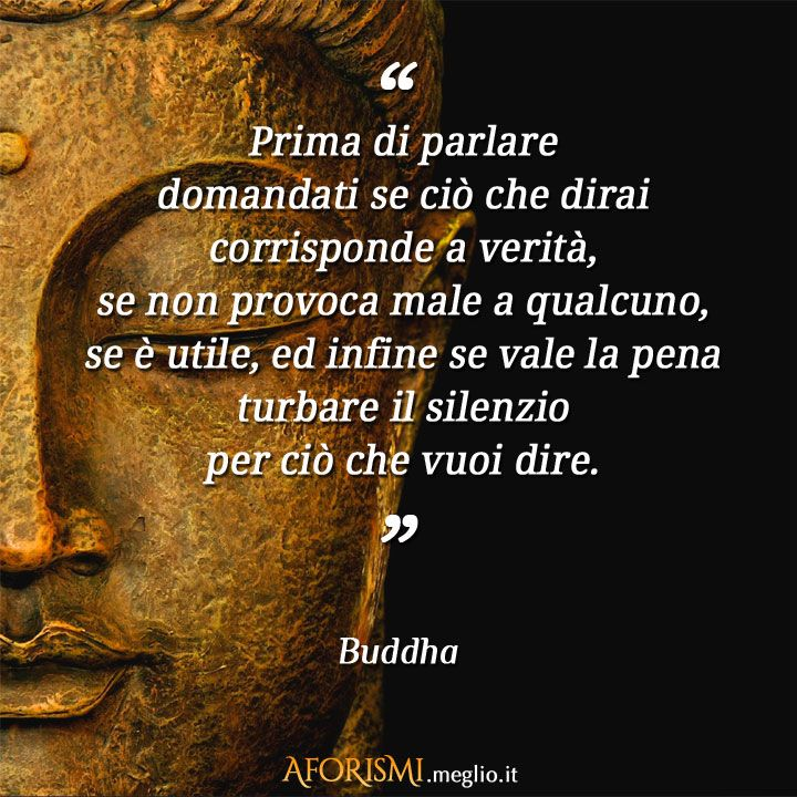 Prima di parlare domandati se ciò che dirai corrisponde a verità, se non provoca male a qualcuno, se è utile, ed infine se vale la pena turbare il silenzio per ciò che vuoi dire. (Buddha)