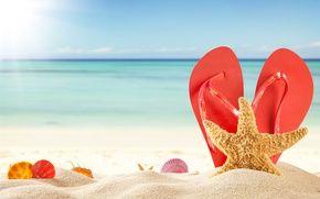 Обои лето, солнце, сланцы, морские звезды, лето, отпуск, песок, море, песок, ракушка, пляж, морские ракушки, пляж, отпуск