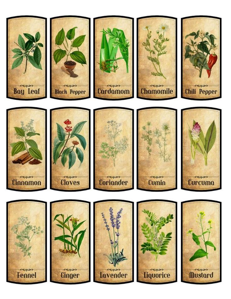 15 spice labels choose from 30 glossy laminated adhesive #HandMade