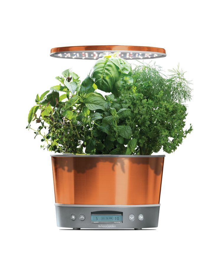 Aerogarden Harvest Elite 360 6 Pod Countertop Garden 640 x 480