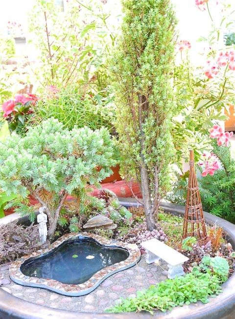 Miniature backyard pool/garden