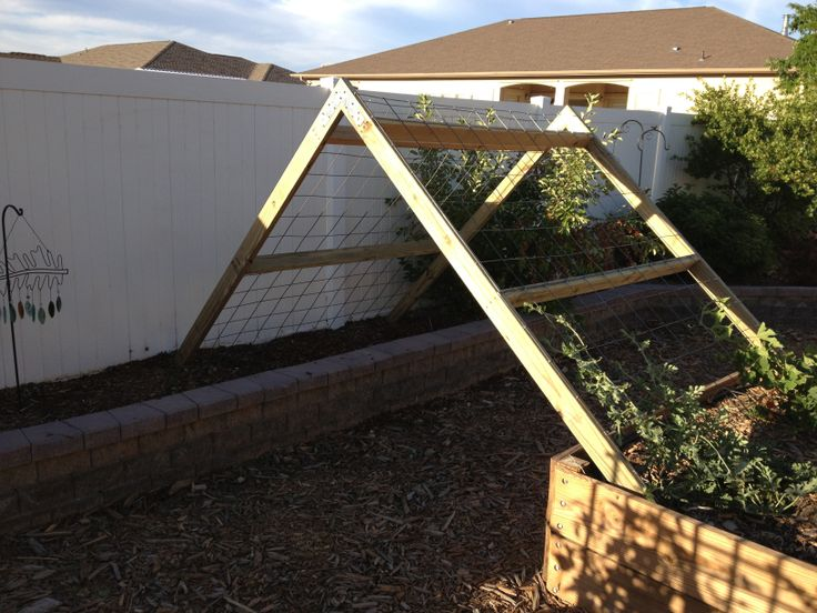 A trellis for our pumpkin and watermelon plants. Made from 2x4s and metal panels.