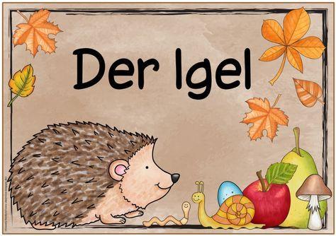 """Themenplakat """"Der Igel""""    Das nächste Themenplakat  ist fertig. Aus gegebenem Anlass (Herbst)stellt es dieses Mal den Igel vor. Wie versp..."""