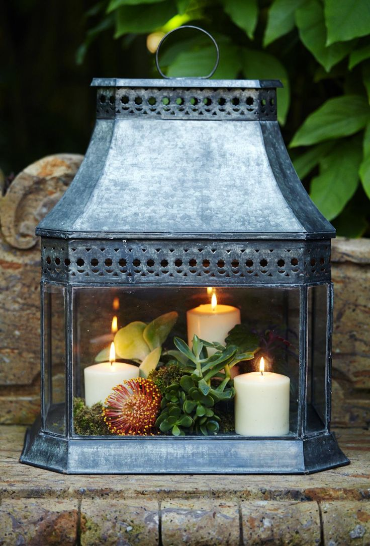 Use as a terrarium or a lantern, or both!