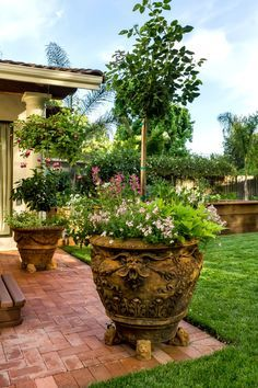 Best Gardening Ideas Images On Pinterest Potted Plants Patio