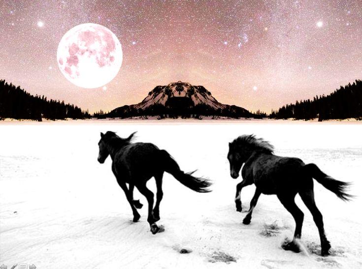 Mercury Retrograde and Full Moon Horoscopes for the Week of November 27th ~ Chani Nicholas