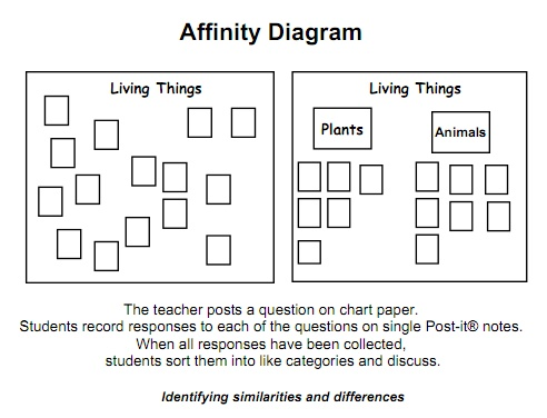 36 best Graphic Organizers images on Pinterest Graphic - affinity diagram template