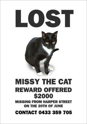 Missing Poster Template  Missing Reward Poster Template