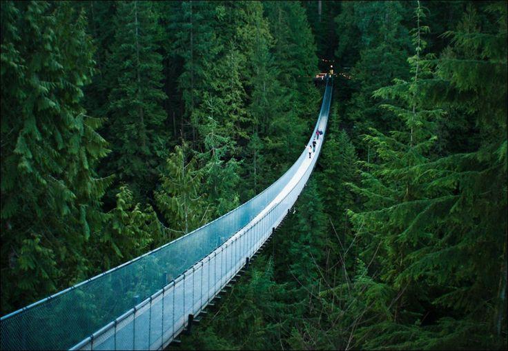 puente-8