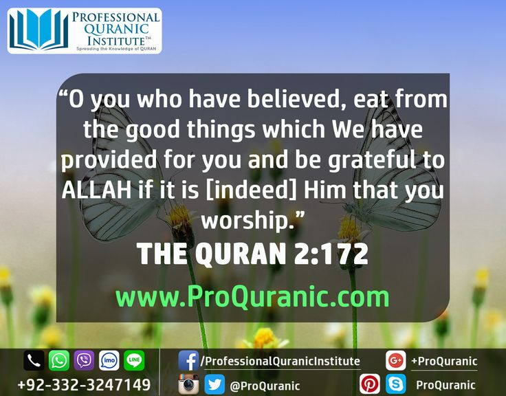 ADMISSIONS ARE OPEN!  ‪#‎LEARN‬ ‪#‎QURAN‬ ‪#‎ONLINE‬ ‪#‎TAJWEED‬ ‪#‎CLASSES‬  www.ProQuranic.com  O you who have believed, eat from the good things which We have provided for you and be grateful to ALLAH if it is [indeed] Him that you worship. THE QURAN 2:172  ‪#‎PROFESSIONALQURANICINSTITUTE‬  ‪#‎ALLAH‬ ‪#‎ISLAM‬ ‪#‎MUSLIM‬ ‪#‎KORAN‬ ‪#‎EDUCATION‬ ‪#‎MAKKAH‬ ‪#‎MADINA‬
