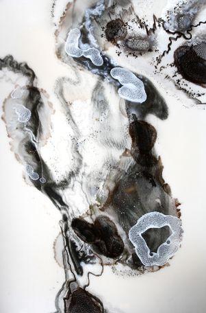 """Moonwalk"" by Mitch Gobel"
