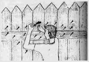 "A Lesson About Anger: ""The Fence"""