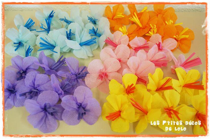 fleurs hawaïennes