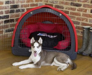 Modern plastic dog crate designed to be the best dog den ever. Also great for travel, house training, anxiety issues etc... http://www.dfordog.co.uk/plastic-dog-crates-petzpodz.html