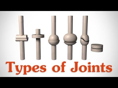 The 6 Types of Joints - Human Anatomy for Artists - YouTube
