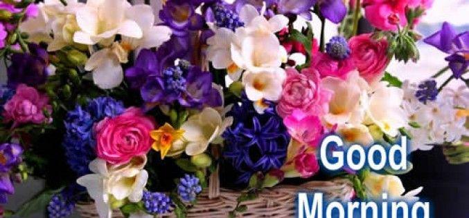 Good Morning Wishes Quotes Shayari SMS Wallpaper Texts Hindi ...
