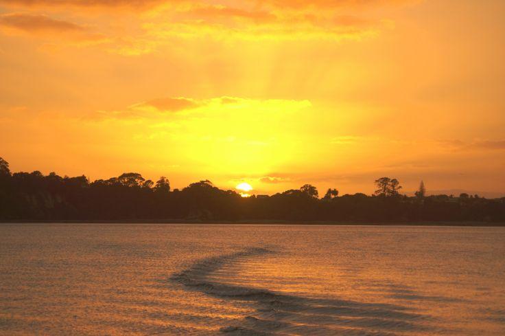 Sunrise over Howick - Auckland - New Zealand January 6th 2014 Photo by Trisha Fitzpatrick