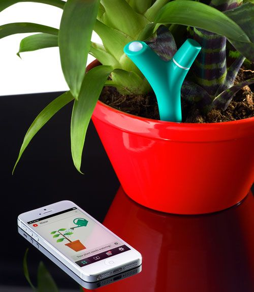 Soon you won't need a green thumb to keep houseplants happy. Just insert this battery-operated sensor into indoor soil to track light, humidity and temperature. Choose the type of potted plant you want to monitor from a library of 6,000 species via an app, and you'll be alerted when it needs more water, sun or fertilizer. Available later this year. Price to be determined; Parrot.com